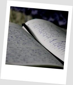 Journal scribbles